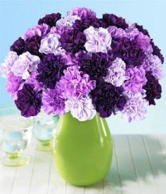 Букет фиолетовых цветов