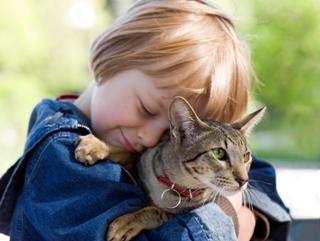 влияние домашних животных