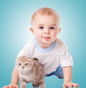 Ребенок 9 месяцев развитие