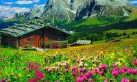 Как выбрать комфортный отель в Карпатах для летнего отдыха?