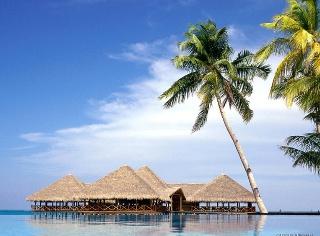 свадьба на Мальдивских островах